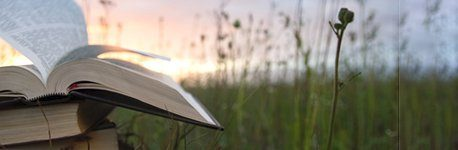 An open book with a grassy field beyond.