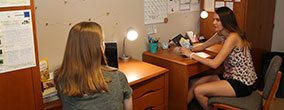 Students studying in their dorm room